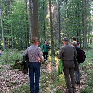 Waldmariechen Waldbaden